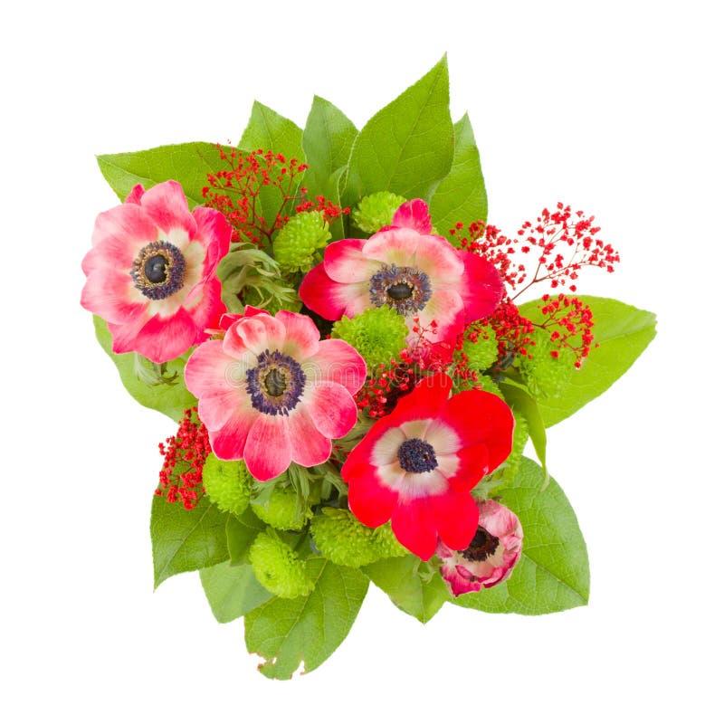 Anemone blüht Blumenstrauß stockfotografie