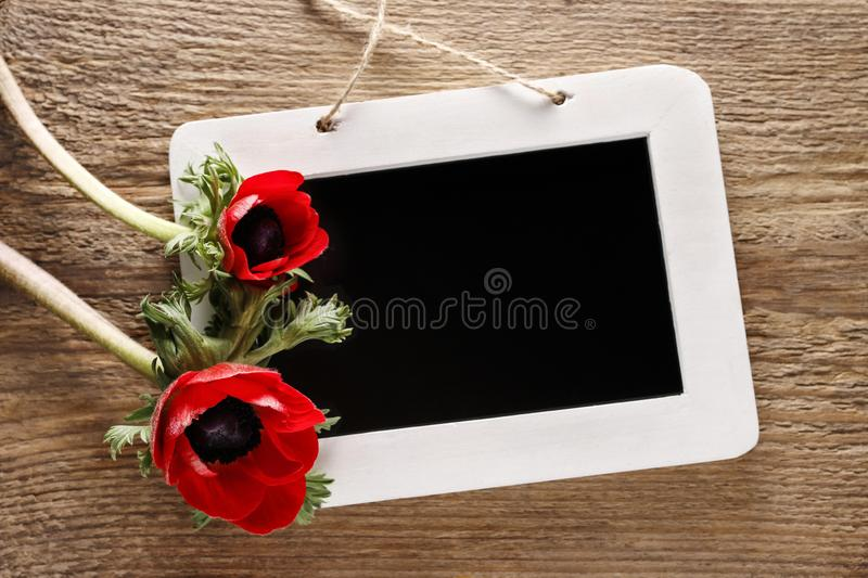 Anemone flowers and blackboard, springtime background stock photography