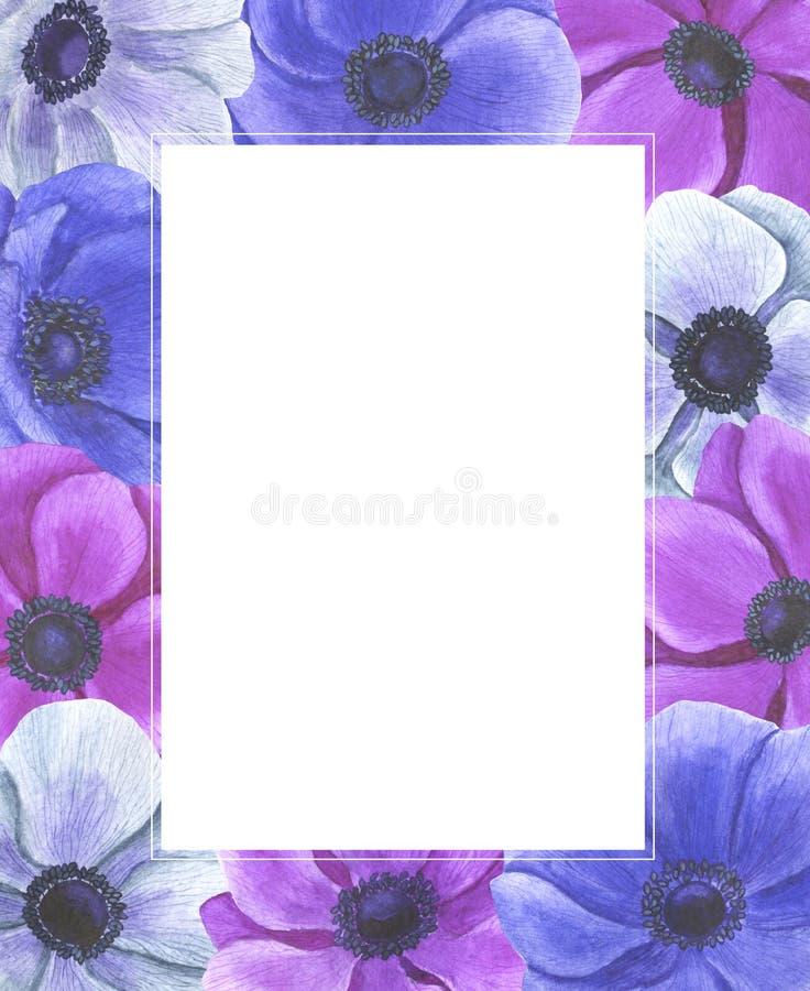 Anemone Frame-de de illustratiereeks van de bloemenwaterverf de zomer botanische decoratie ontwerpt de groetkaarten van huwelijks stock illustratie