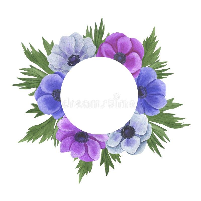 Anemone Frame-de de illustratiereeks van de bloemenwaterverf de zomer botanische decoratie ontwerpt de groetkaarten van huwelijks vector illustratie