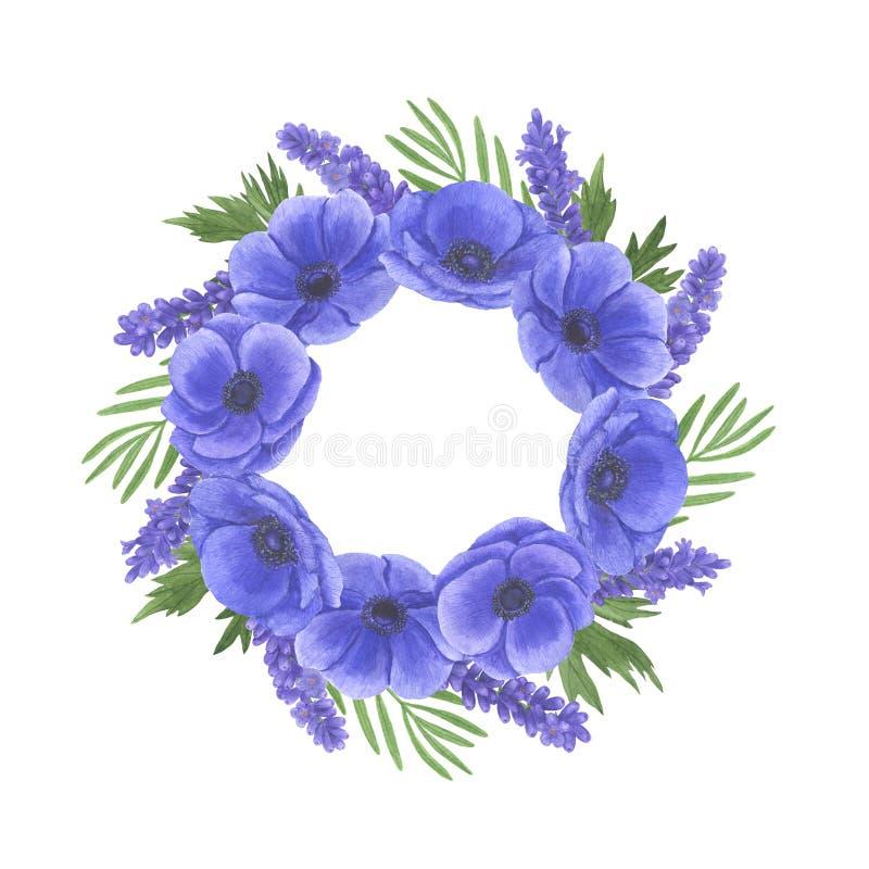 Anemone Frame-de de illustratiereeks van de bloemenwaterverf de zomer botanische decoratie ontwerpt de groetkaarten van huwelijks royalty-vrije illustratie