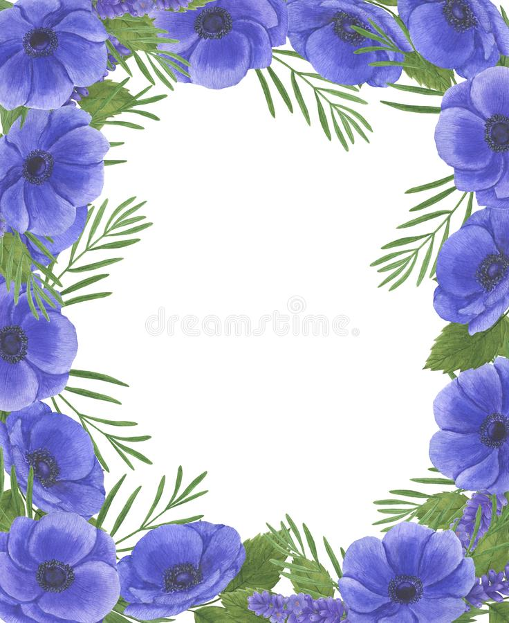 Anemone Frame flowers watercolor illustration set of summer botanical decorations design wedding invitations greeting cards. Illustration Anemone flowers stock illustration