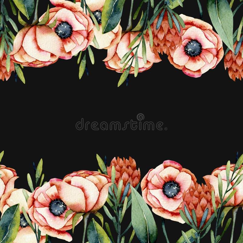 Πρότυπο καρτών των συνόρων λουλουδιών anemone και protea κοραλλιών watercolor ελεύθερη απεικόνιση δικαιώματος