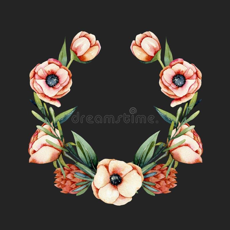 Στεφάνι των λουλουδιών anemone και protea κοραλλιών watercolor ελεύθερη απεικόνιση δικαιώματος