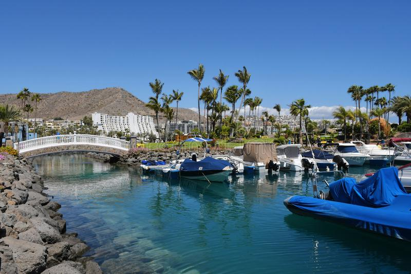 Anfi fel Mst海滩,大加那利岛,西班牙海岛  库存照片