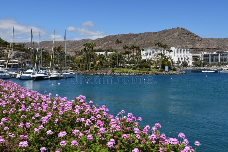 Anfi felMst strand, ö av Gran Canaria, Spanien royaltyfria foton