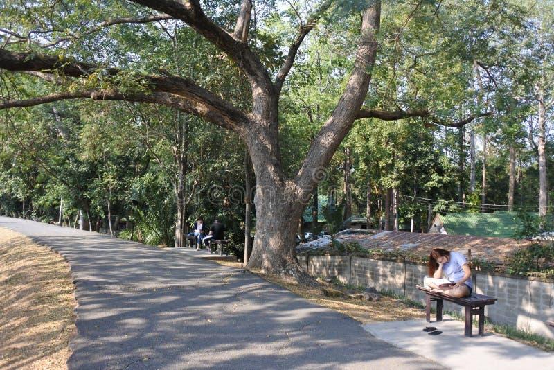 Ang Kaew Reservoir royaltyfria bilder