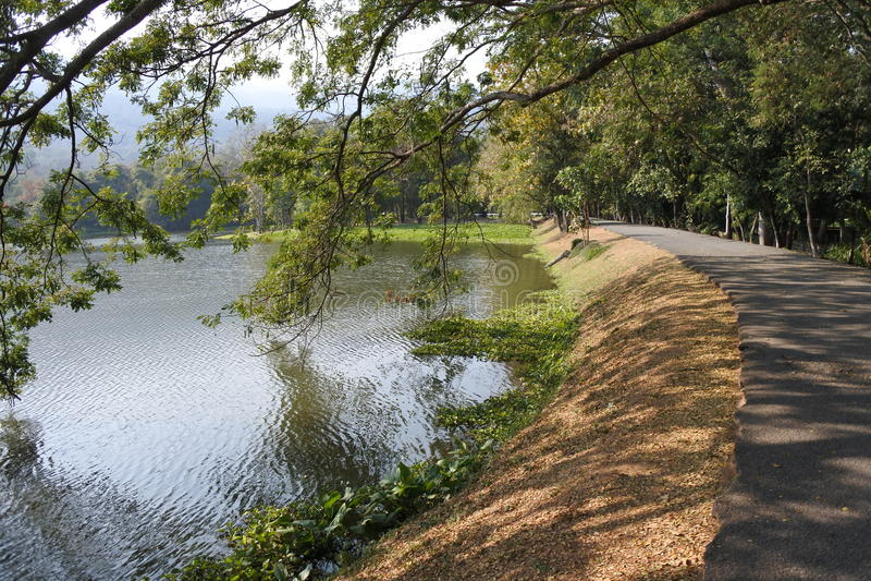 Ang Kaew Reservoir fotografia de stock royalty free