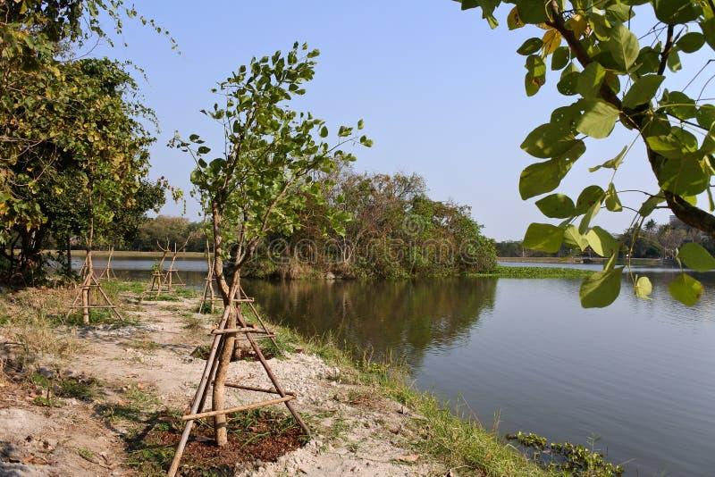 Ang Kaew Reservoir imagem de stock