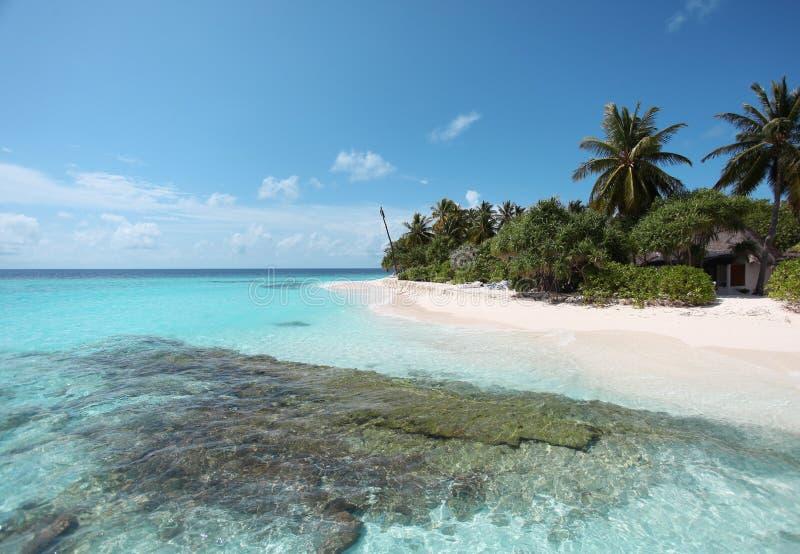 angaga Мальдивы стоковые изображения rf