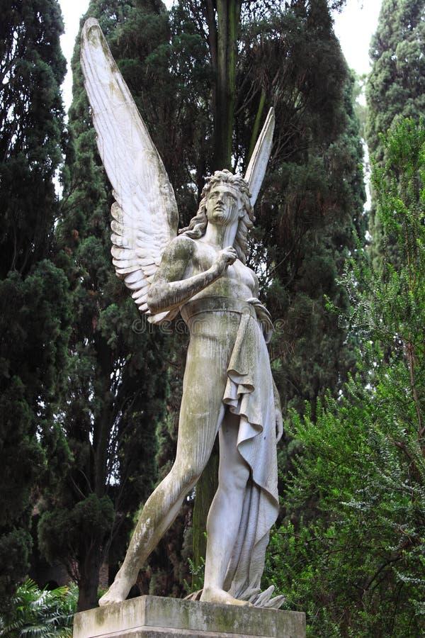 Ange d'ange image stock