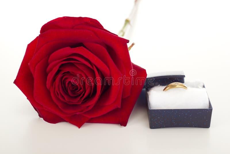 Angebot der Heirat stockfotografie