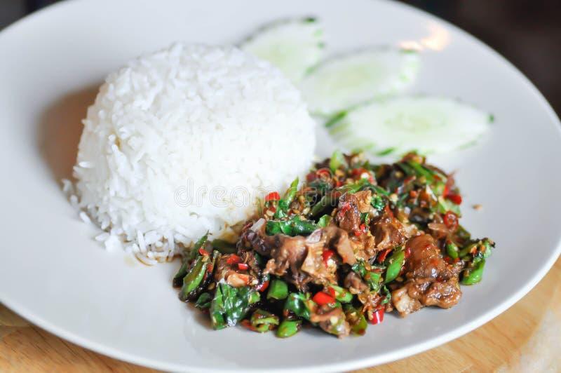 Angebratenes Rindfleisch mit heiligem Basilikum und Paprika und Reis stockfoto