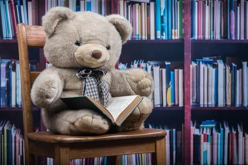 Angefüllter Teddybär, der ein Buch vor einem Bücherregal hält stockfoto