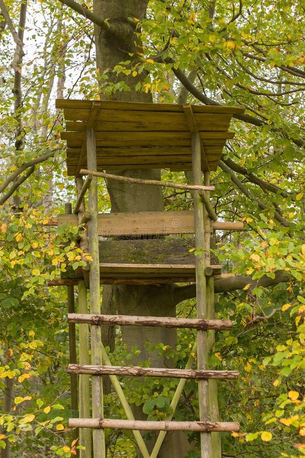 Angehobenes Fell - angehobene Vorhänge im Herbst beleuchten stockfotografie