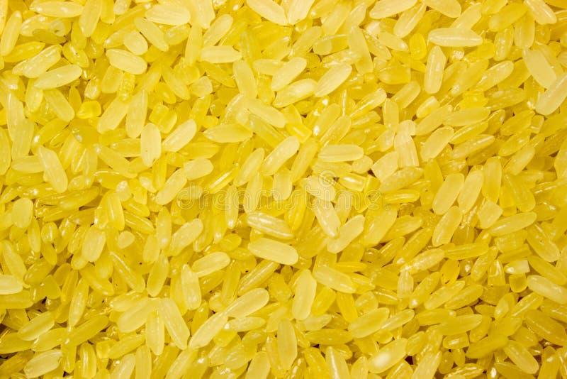 Angekochter Reis des Kornes Gelb lizenzfreie stockfotografie