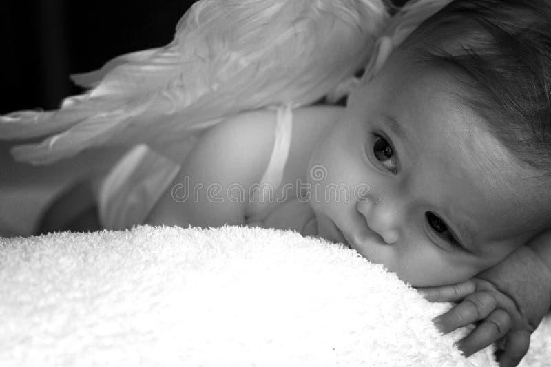 Angel Baby. Image of baby wearing angel wings stock photo