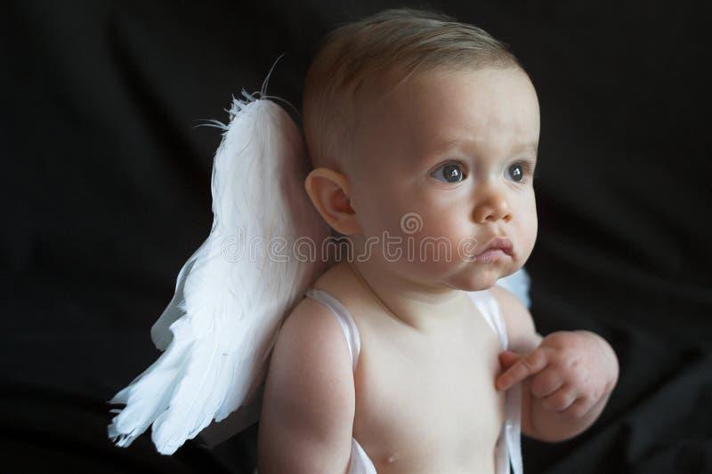 Download Angel Baby stock photo. Image of angel, heavenly, angelic - 1925928