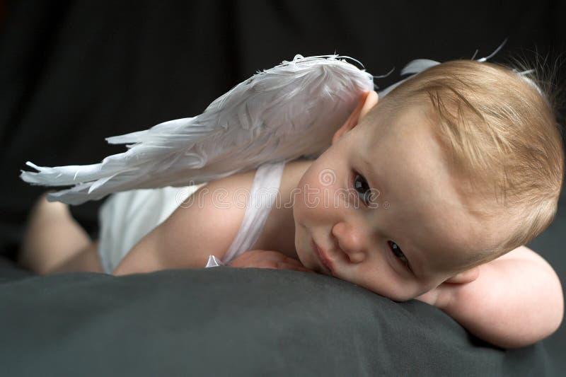 angel baby στοκ φωτογραφία