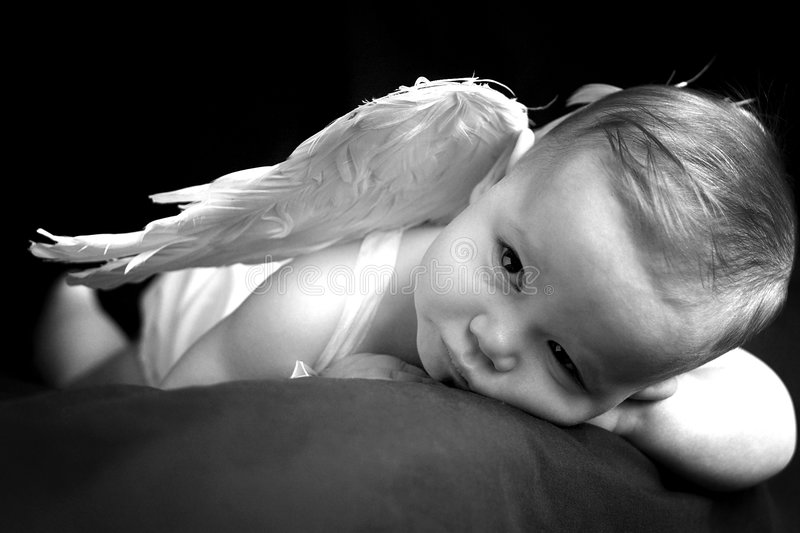 Download Angel Baby stock image. Image of healthy, innocence, gorgeous - 2128763