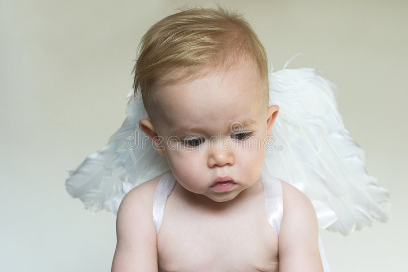 Angel Boy. Image of an adorable toddler wearing angel wings royalty free stock image