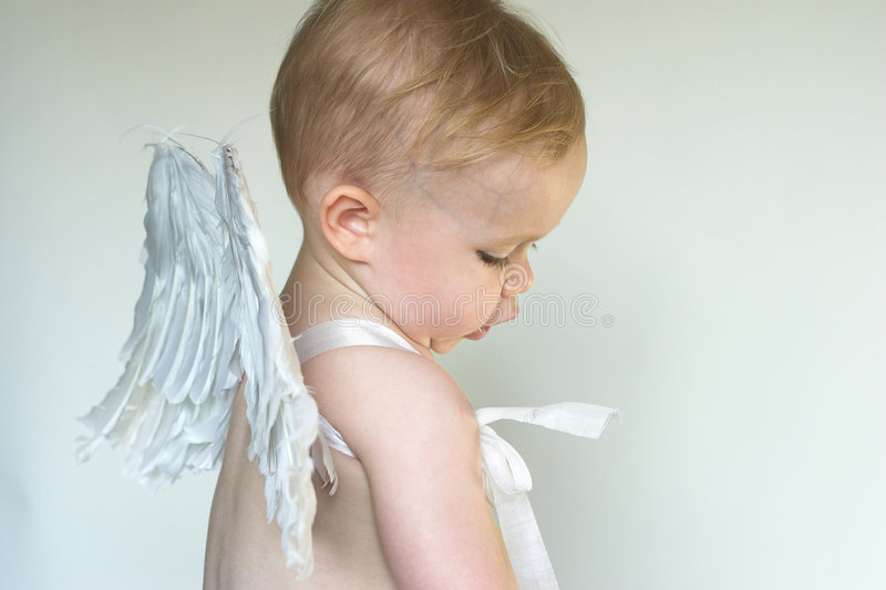 Angel Boy royalty free stock images