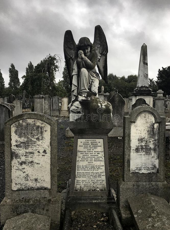 Angel in Dublin. Angel and gravestones in Dublin cemetary with forbidding sky. Religeous horror, historical moss covered royalty free stock image