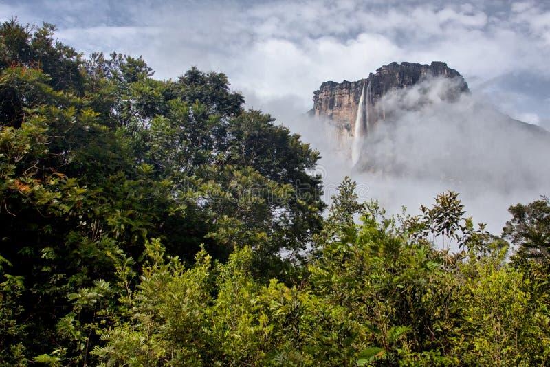 Angel Falls royaltyfria foton