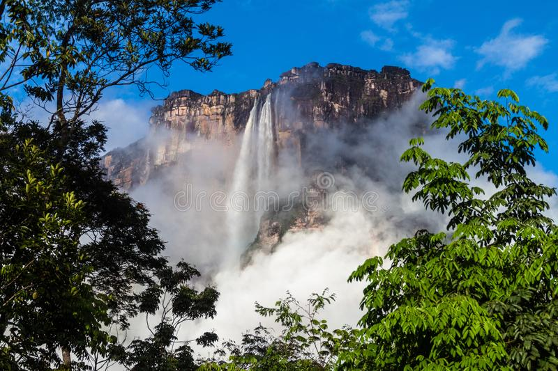 Angel Falls Salto Angel arkivbilder