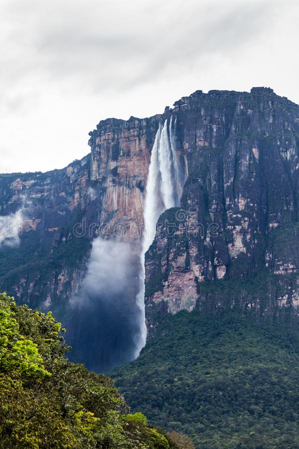 Angel Falls Salto Angel. World`s highest waterfall 978 m , Venezuela stock photos