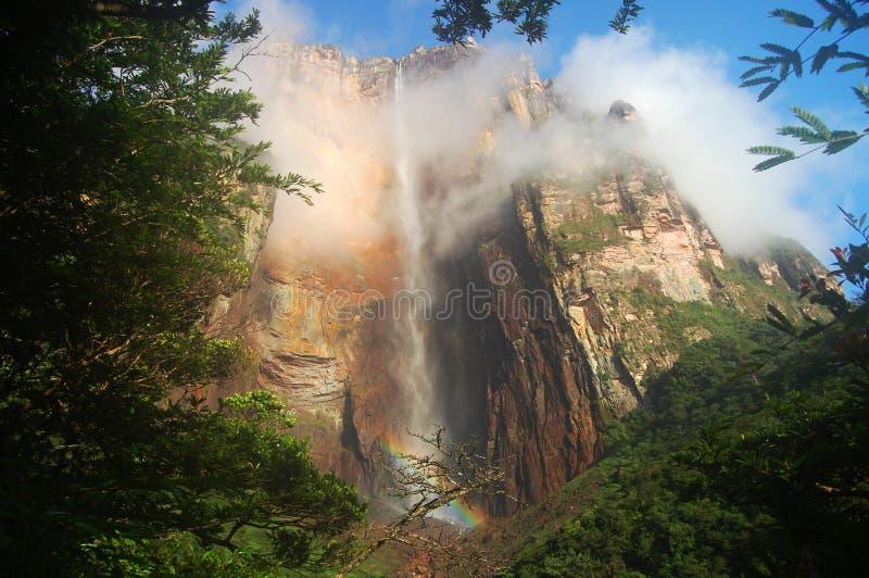 Angel Falls - Venezuela fotografía de archivo libre de regalías