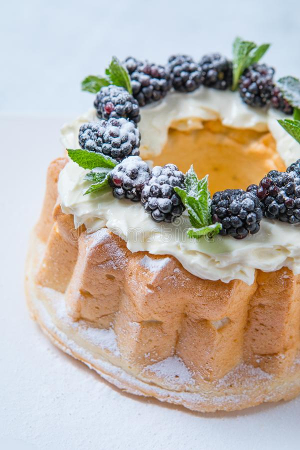 Angel Food Cake foto de stock royalty free