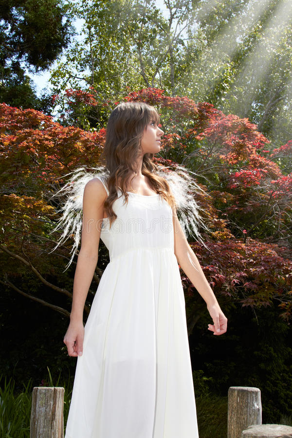 Angel in garden stock image