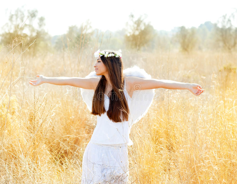 Angel girl in golden field with white wings royalty free stock image
