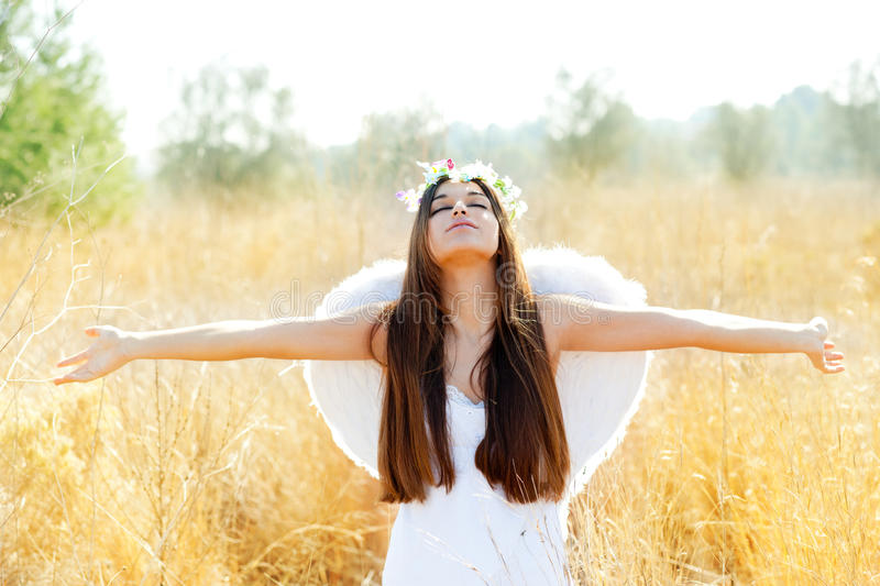 Angel girl in golden field with white wings royalty free stock photography