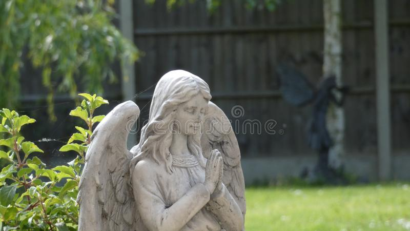 Angel Praying voor de Fee stock foto's