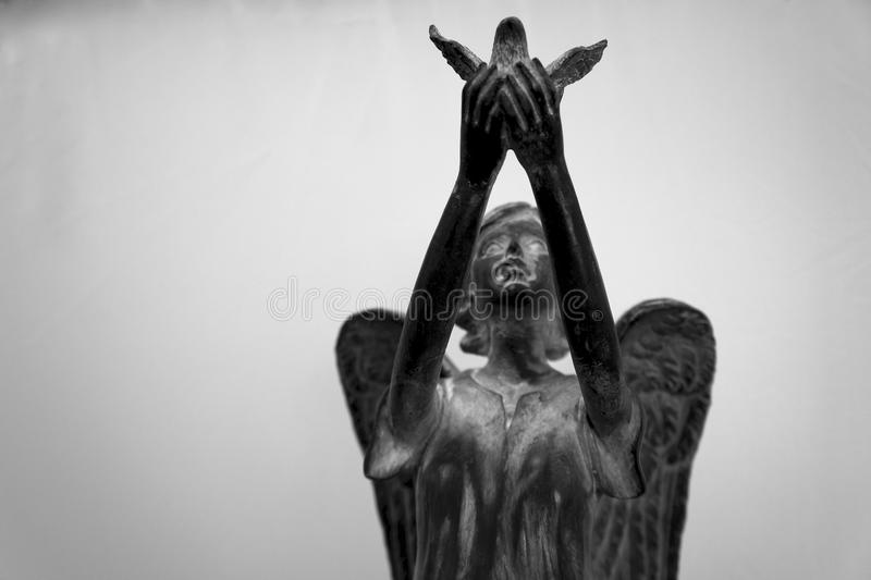 Angel releasing dove with hands upraised. Statue of angel releasing dove against white background. Concept of peace, tranquility, and grace royalty free stock photos