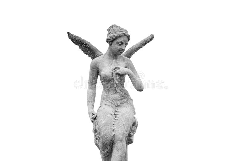 Angel statue isolated stock photos