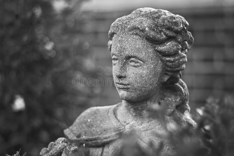 Angel In Stone images stock