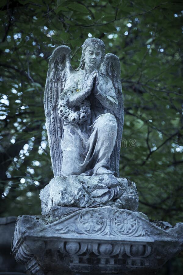 Angel stone statue on an old cemetery royalty free stock images
