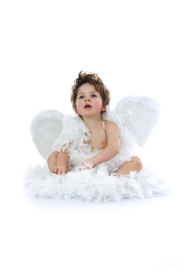angel trochę fotografia royalty free