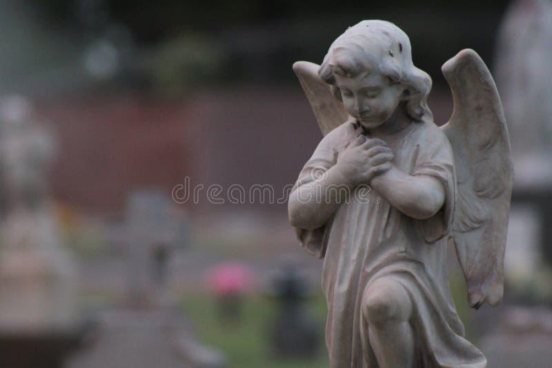 angel trochę zdjęcie royalty free