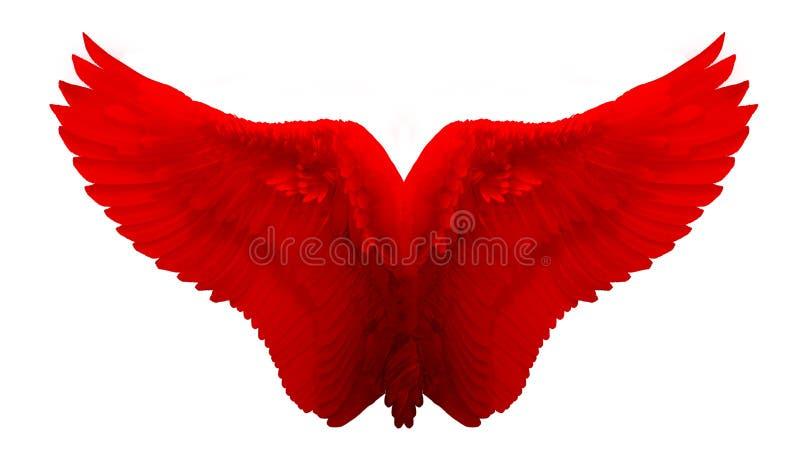Angel Wing rosso ha isolato fotografia stock