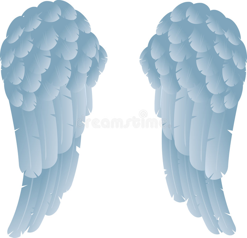 Angel wings. An illustration of angel or dove wings vector illustration