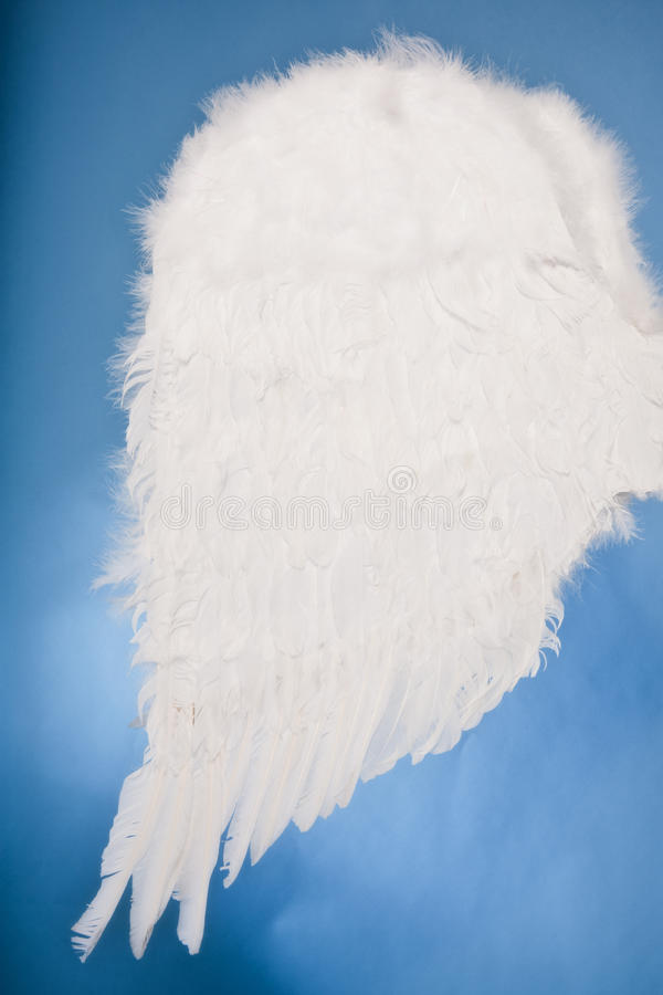 Angel Wings. White angel wings on a mottled blue background royalty free stock photography