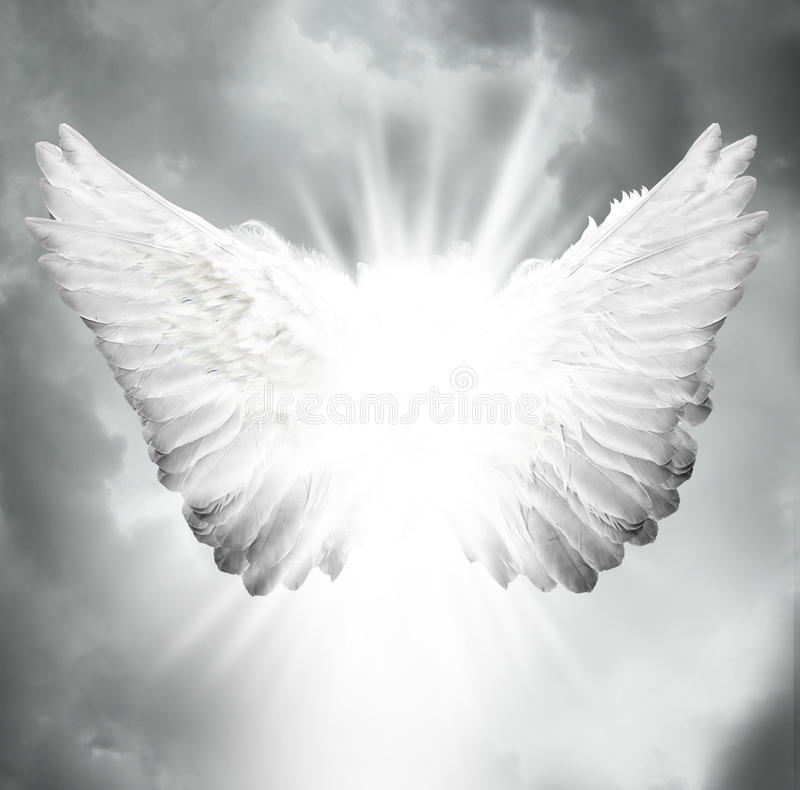 Angel Wings Stock Images - Download 24,079 Royalty Free Photos