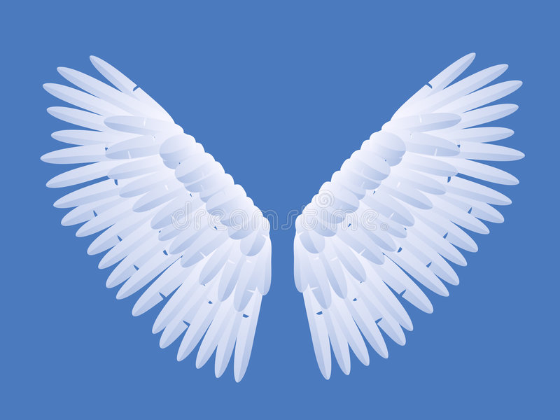Angel Wings. Illustration Blue Background