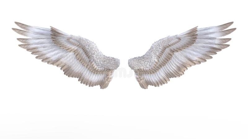 Angel Wings illustration stock