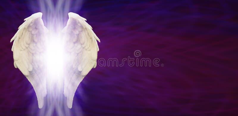 Angel Wings Banner Head on Purple Matrix vector illustration