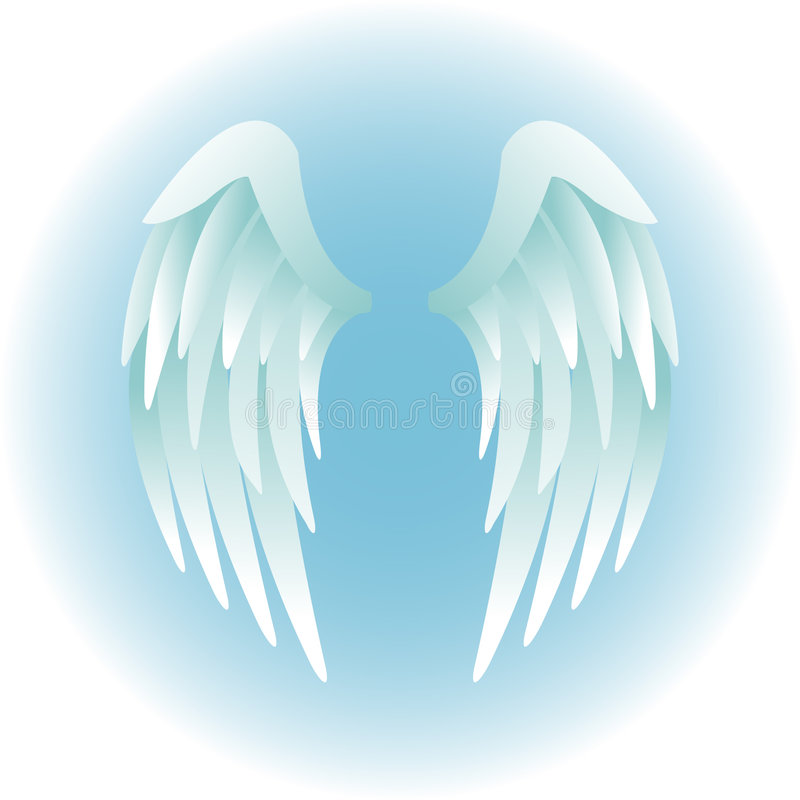 Angel Wings/eps vector illustration
